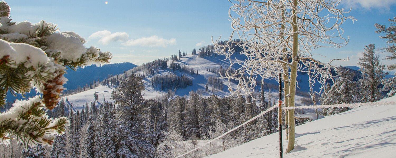 Winter view of Beaver Mountain